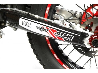swingarm protection Beta Evo 2T 09-15
